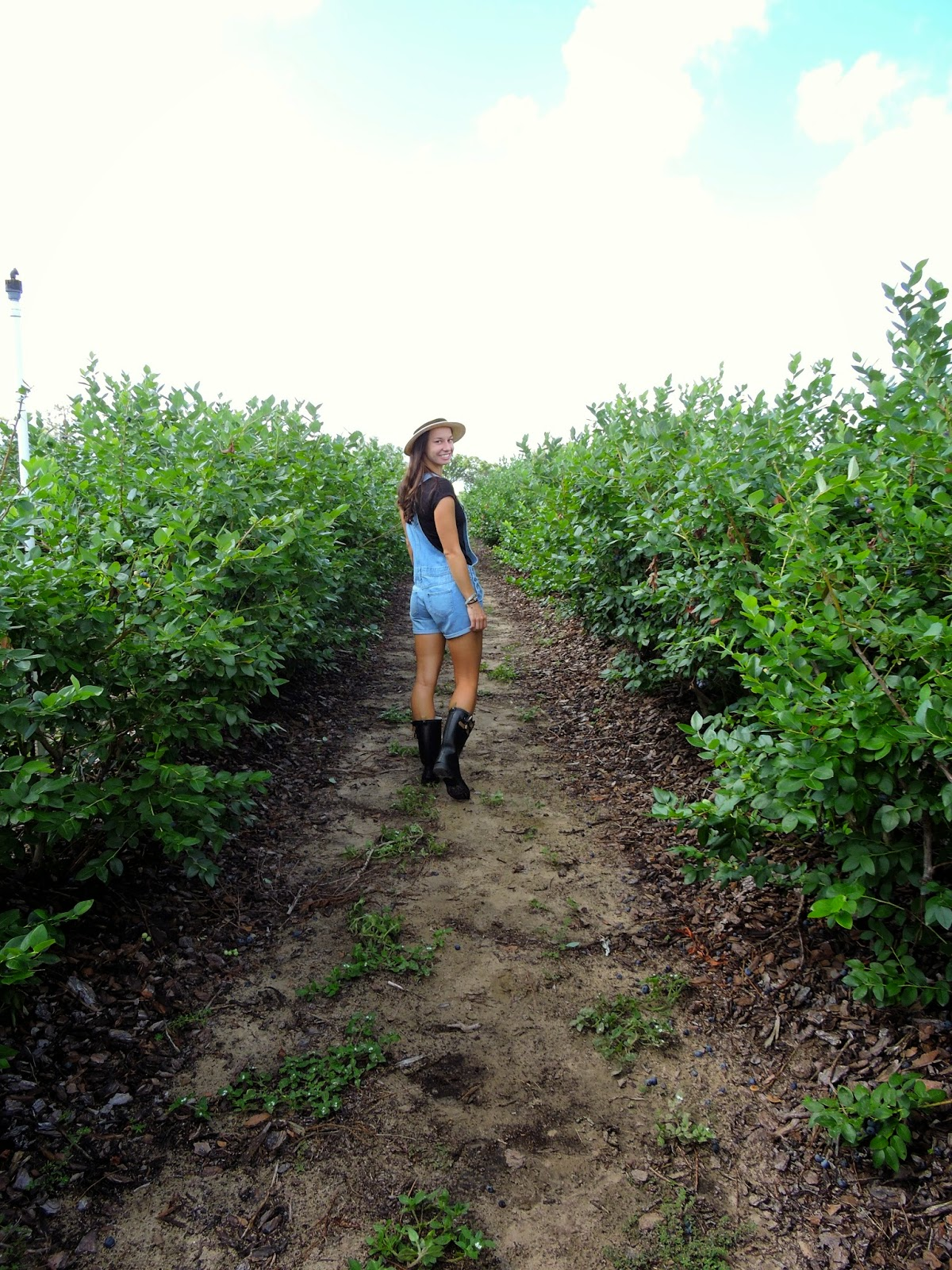 Blueberry Picking in Overalls